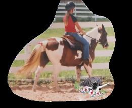ridingbucky